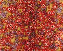 Poly fleurs rouges